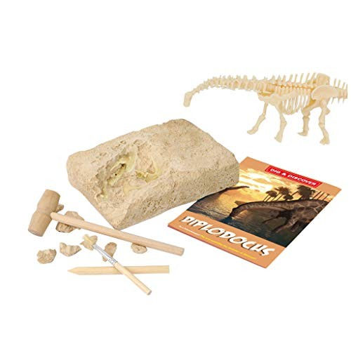 Dinosaur Fossil Archaeological Excavation Assembling Kit Paleontology Educational Learning Funny Toys Yellow
