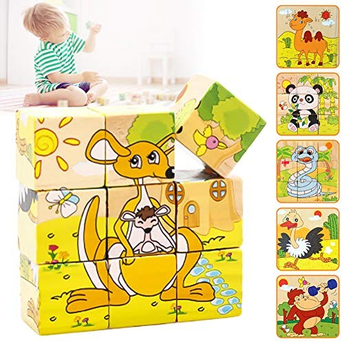 Ternence Flynn 6 in 1 Wooden Block Jigsaw Puzzles Toddler Intelligence Early Learning Building Toys 9 Pieces Six-Sided Painting Three-Dimensional Puzzle Kindergarten Baby