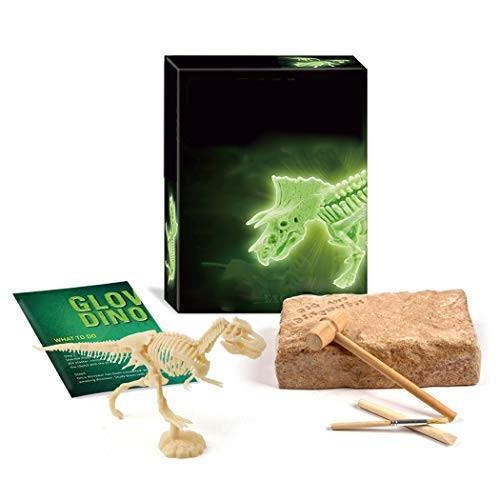 Coxeer Kids Mini Dig Kit DIY Glow in The Night Luminous Dinosaur Excavation Educational Toy