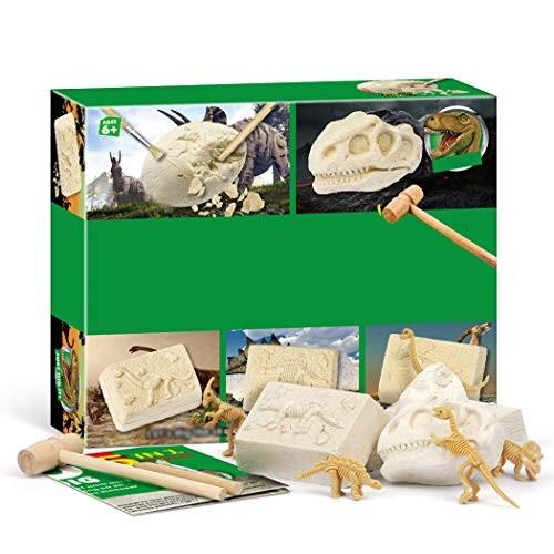Coxeer Dinosaur Dig Kit 5 in 1 Tyrannosaurus Rex Educational Toy Excavation for Kids