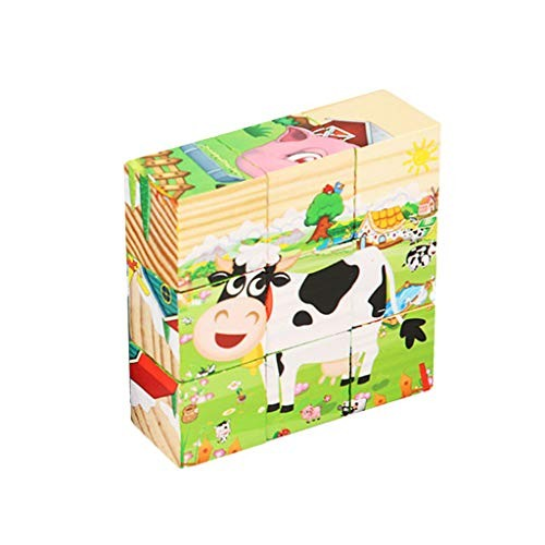 RQWEIN Puzzle Toy Children Wooden 9 Blocks Six Sides Building Dimensional Educational for 3-14 Years Old