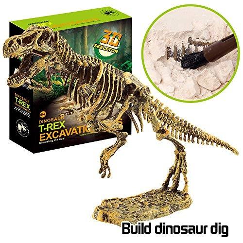 toy Boy Girl Child Car Modeleducational ToysSimulation Dinosaur Fossil Model Toys Science Educational Dig Kit Excavation KitsA