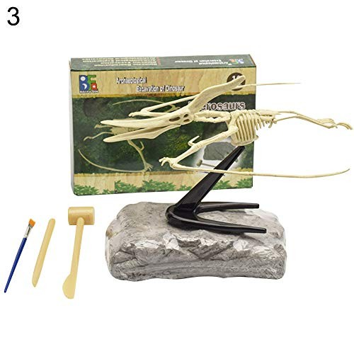 NA Dinosaur Fossil Skeleton Excavation Dig up Kit DIY Assembly Educational Kids Toy Display Mold – Pterodactyl
