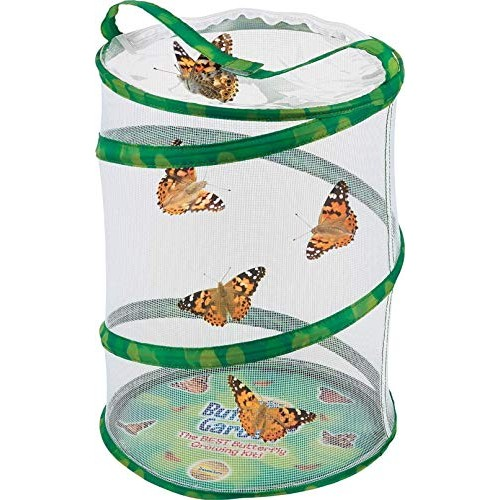 Butterfly Garden Original Habitat and Two Live Cups of Caterpillars with STEM Journal Life Science & Education Kit