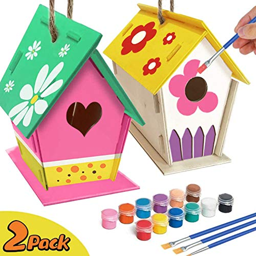 2 Pack DIY Bird House Kit Build and Paint