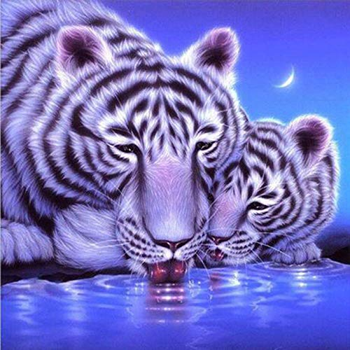 DIY 5D Diamond Painting Kit Round Full Drill Embroidery Cross Stitch Arts Craft Canvas Supply for Home Wall Decor GiftWhite tiger-16x16in