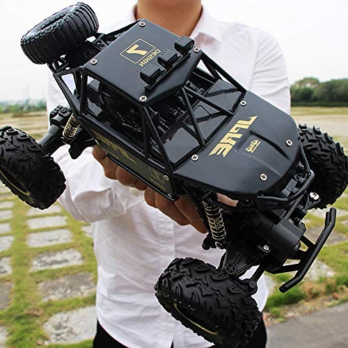 Lotees Kids Toy Radio Remote Control Car High Speed Truck 4WD RC Car Buggy