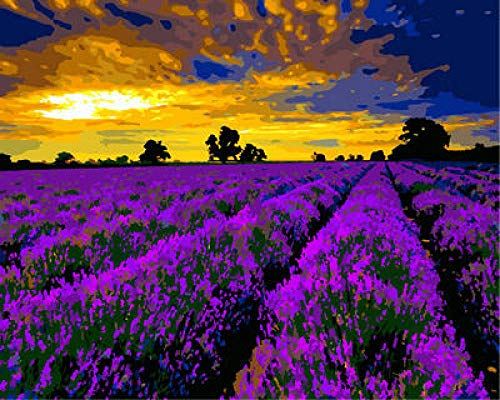 NA Paint by Numbers DIY Oil Painting Handmade Crafts Kit for Kids and Adults Number Drawing Contest-Lavender at Dusk 16×20 inch Without Frame