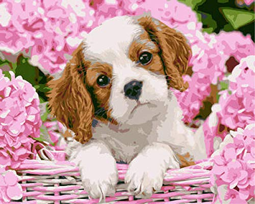 NA Paint by Numbers DIY Oil Painting Handmade Crafts Kit for Kids and Adults Number Drawing Contest-Pink Flowers Puppies 16×20 inch Without Frame