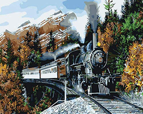 NA Paint by Numbers DIY Oil Painting Handmade Crafts Kit for Kids and Adults Number Drawing Contest-Train 16×20 inch Without Frame