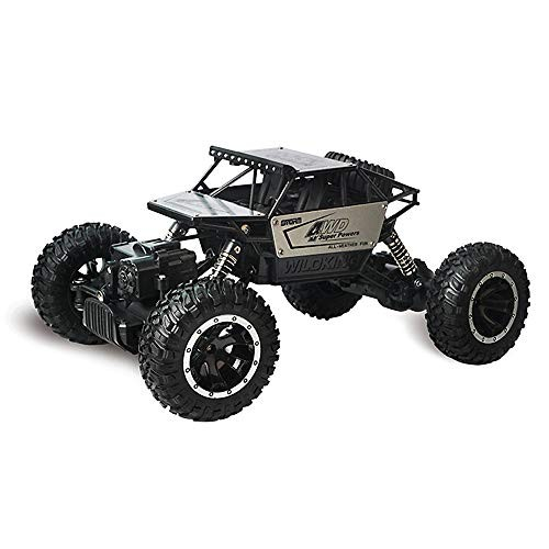 HOBOYER Super RC Car 24 Ghz 1/16 Scale High-Speed Remote Control Model Car Off-Road