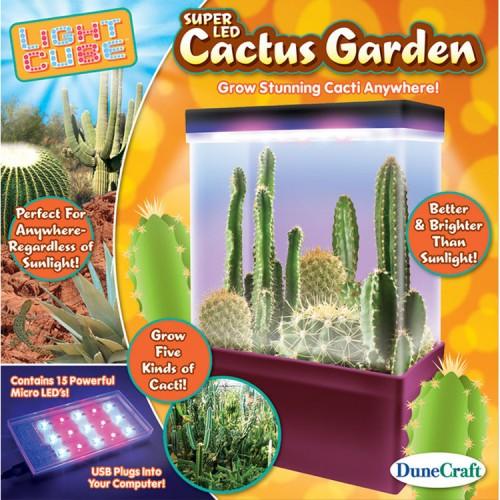 Cactus Garden LED Light Cube Plant Kit
