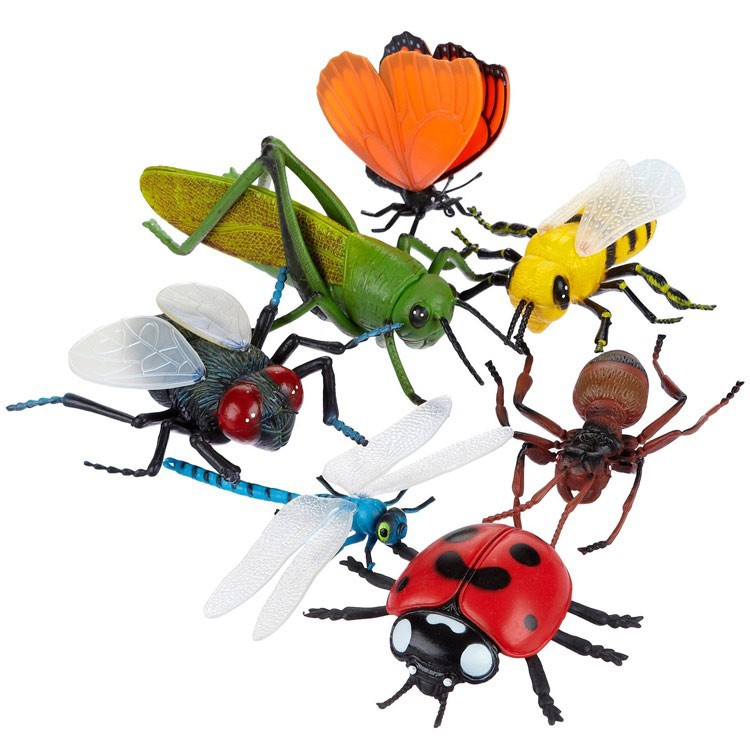 Bug Toys For Boys : Toy giant bugs pc set jumbo insects educational toys