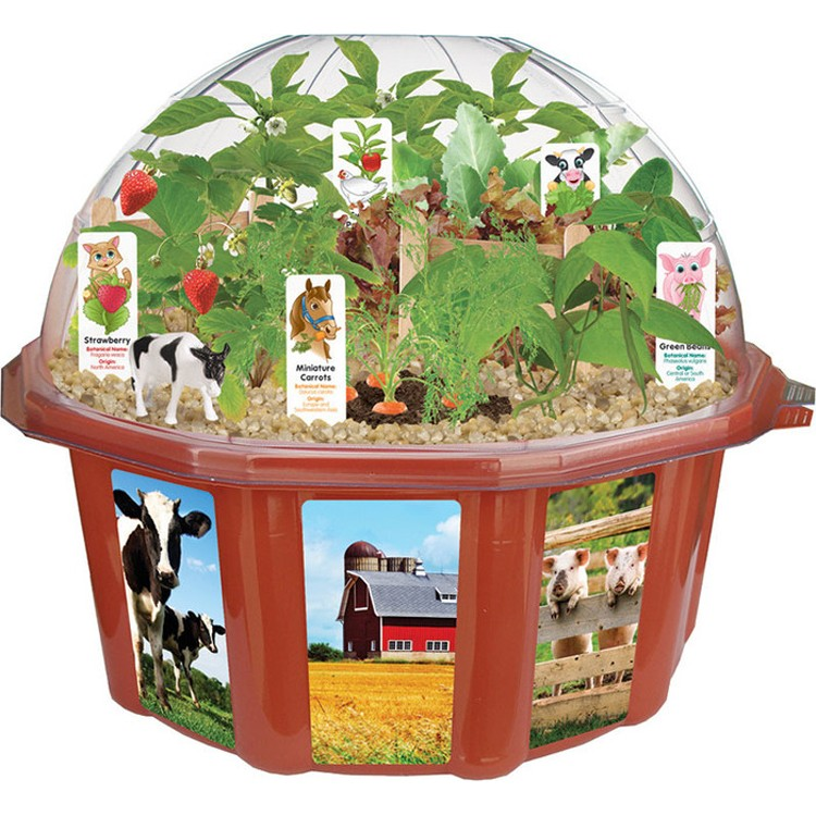 Dome Home Kits: Farmers Garden Dome Veggie Growing Plant Kit