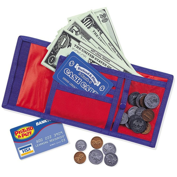 Cash N Carry Wallet Money Learning Play Set Educational