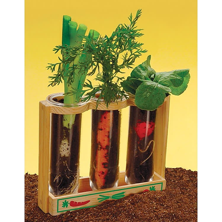 Root Viewer Plant Growing Kit Educational Toys Planet