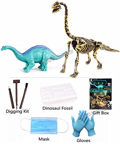 12PCS Insect Digging Suit /& D7247 JRTPK 12PCS DIY Insect Toys Novelty Digging Fossils Excavation Toys Kids Learning Educational Party Funny Gifts Toy for Girl Boy