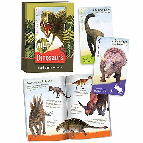 Dinosaurs Mdf Toy Box Childrens Storage Toys Games Books: Dinosaurs Card Game & Book