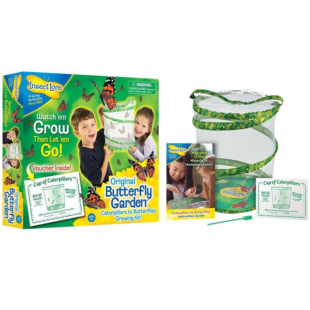 bugs u0026 insects educational toys planet
