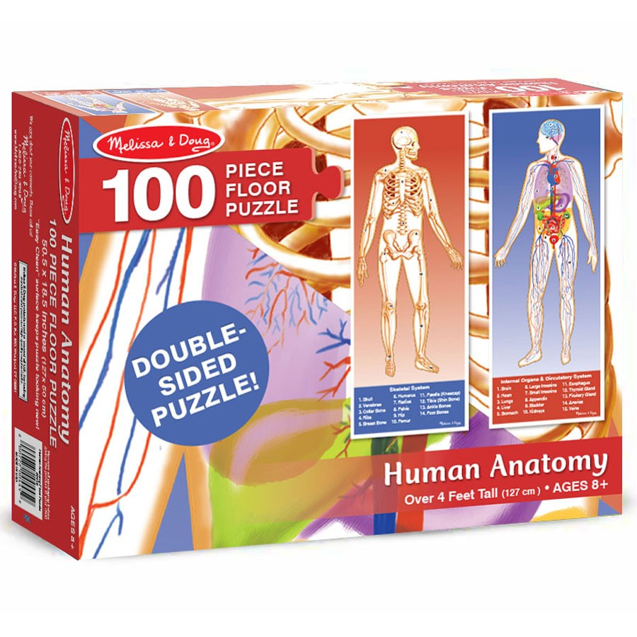 Human Anatomy Floor Double Sided Puzzle Educational Toys Planet