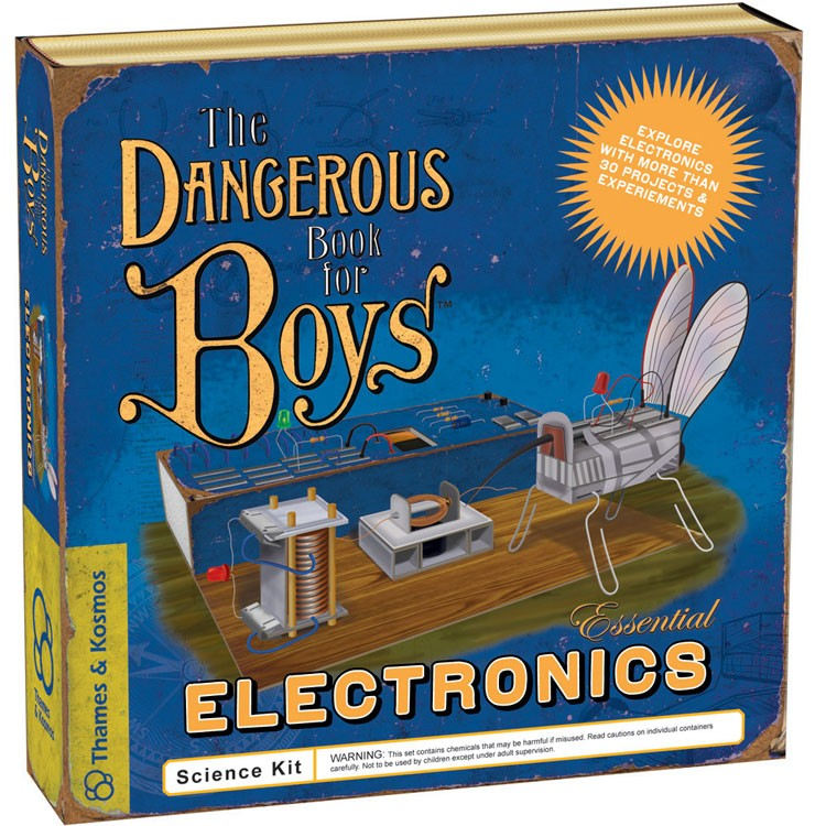 Science Toys For Boys : The dangerous book for boys essential electronics