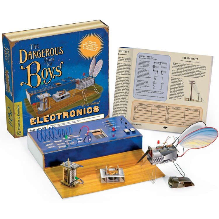 Electronic Toys For Boys : The dangerous book for boys essential electronics