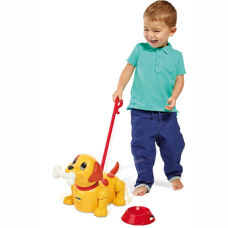 Push & Pull Puppy Toddler Play Set - Educational Toys Planet