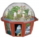 Sensory Dome Terrarium Plant Growing Kit