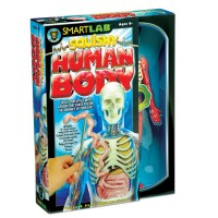 Squishy Human Body Science Kit