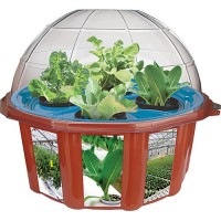 Hydro Dome - Grow Plants Hydroponically