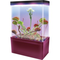 Carnivorous Creations LED Light Cube Plant Kit