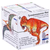 Dinosaurs Fold-Out Cube Book