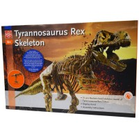 T-Rex Skeleton Giant Dinosaur Model