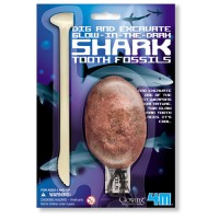 Shark Tooth Fossil Digging Kit
