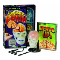 Squishy Brain Human Body Science Kit