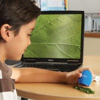 Zoomy Handheld Digital Microscope
