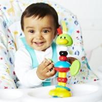 Bendy Bird Baby Highchair Toy