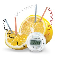 Lemon Clock Science Party Favor
