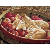 Cobble Hill Apples And Oranges 500 Piece Jigsaw