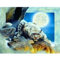 Sunsout Inc Edge Of Night 1000Pc Jigsaw Puzzle By Kevin