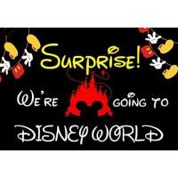 Were Going To Disney World 30 Piece