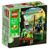 Lego Kingdoms Mini Figure Set 7955