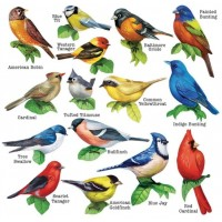 Song Birds Ii 15 Mini Shaped Puzzles 500 Piece Total By Lafayette Puzzle