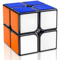 Dfantix Gan Speed Cube 2X2 Gan 2X2 Speed Cube 2X2X2 Magic Cube Puzzle