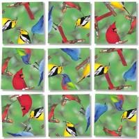 Scramble Squares Birds Of North America 9 Piece Challenging Puzzle Ultimate Brain Teaser And Mind