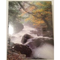 Springbok Misty River Morning Jigsaw
