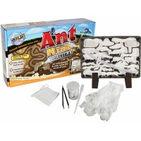 Ant Farm - Toy Ant Mine