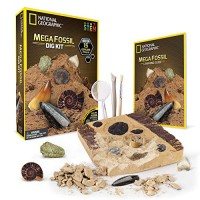 NATIONAL GEOGRAPHIC Mega Fossil Dig Kit Excavate 15 real fossils including Dinosaur Bones Mosasaur & Shark Teeth - Great STEM Science gift for Paleontology and Archeology enthusiasts of any age