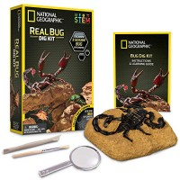 NATIONAL GEOGRAPHIC Real Bug Dig Kit - up 3 Insects including Spider Fortune Beetle and Scorpion Great STEM Science gift