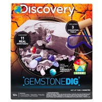 Discovery Kids Gemstone Dig Stem Science Kit by Horizon Group Usa Excavate & Reveal 11 Real Gemstones Includes Goggles Excavation Tools Streak Plate Magnifying Glass More
